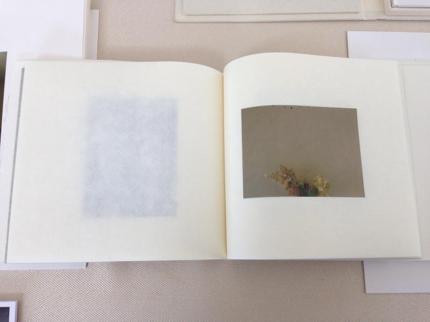 """Ewa's Book """"Finding Wyeth"""""""