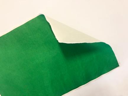 green hiroya